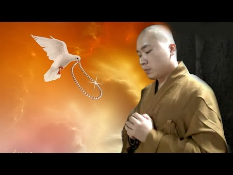 Cần Hiểu Rỏ Về Niệm Phật -  ĐĐ. Thích Tâm Đức
