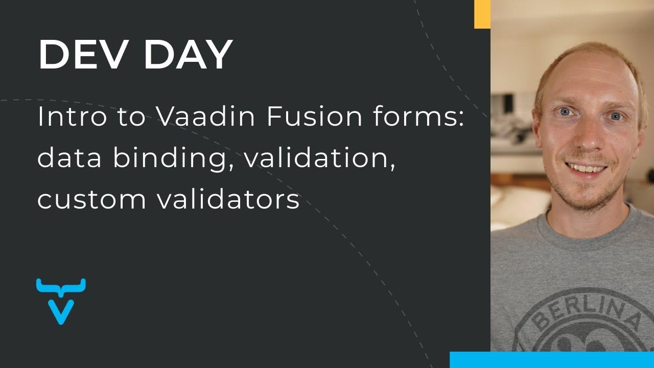 Intro to Vaadin Fusion forms: data binding, validation, custom validators