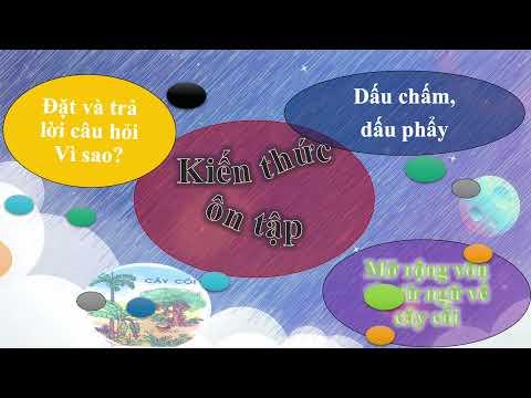 Lớp 3 - Tuần ôn tập 1 - Tiếng Việt: Tiết 1