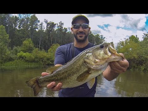 Pond bass fishing killer virginia farm pond revisited for Bass fishing ponds