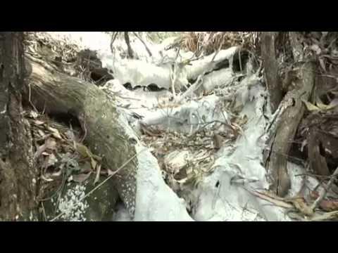 River encased in concrete: Glencore Xstrata's mine mistake in conservation area Mt Sugarloaf, NSW