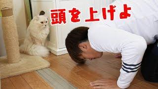 マ)トイレは僕がまもるだ! メインチャンネルはこちら 【TWINS】https:...