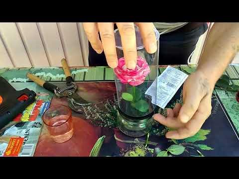 Как сделать вечную розу в колбе своими руками