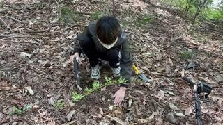 금속 탐지기 실험 영상