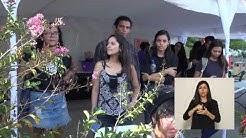 Festival Diverso en la UNA Campus TV Setiembre