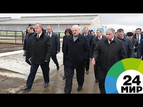 Лукашенко уволил губернатора Могилевской области - МИР 24