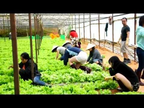 Tour trải nghiệm nhà nông Đà Lạt - www.khamphadalat.com - Dalat Discovery Travel