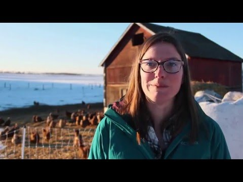 The 2015 Peavey Mart Community AG Grant Winner:   Organic Alberta/Young Agrarians