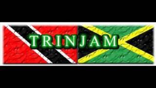 TrinJam Champion Sound Dub Plate - Meshach