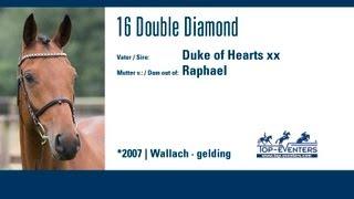 16 Double Diamond