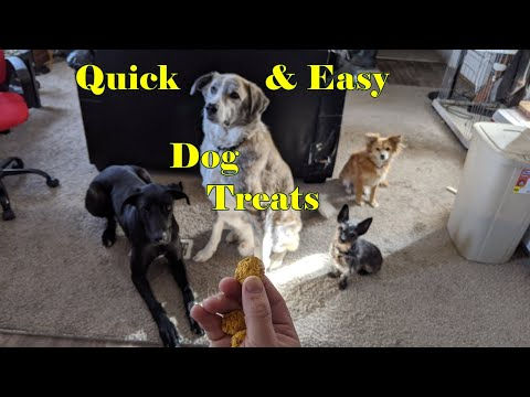 easy,-fast-recipe-for-all-natural-treats-your-dog-will-love!