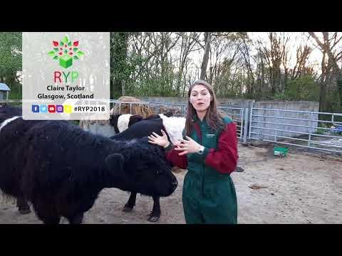 Claire Taylor - Glasgow, Scotland (Vlog 1)