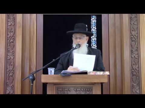 נשיאות כפיים - שיעור כללי מסכת כתובות - הרב יעקב אריאל
