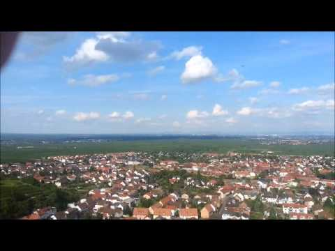 Der Blick in das Rebenmeer!