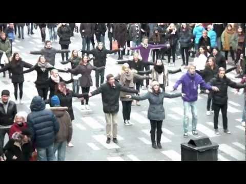 Avicii - Levels Music Video (Flashmob Contest Cover)