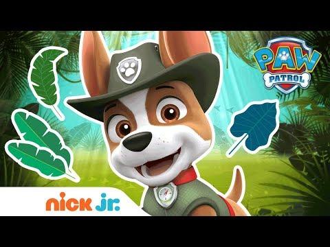 PAW Patrol Extended Trailer Ft.Tracker 🐾 NEW Full Episode On Nick Jr.