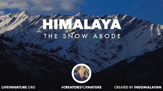 Secrets of a Himalayan Winter | Trailer | Creators for Nature
