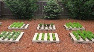Veja o que fazer com Pallets usados no seu jardim – Você vai se surpreender