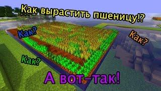 как добыть и посеять пшеницу в minecraft