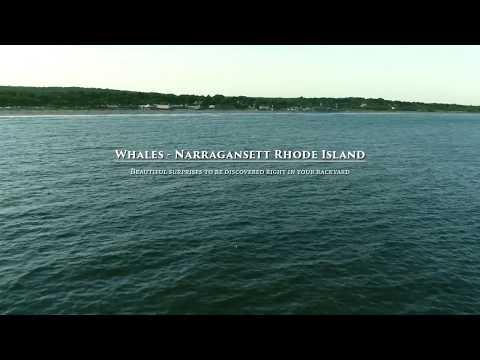 Whale's Narragansett RI