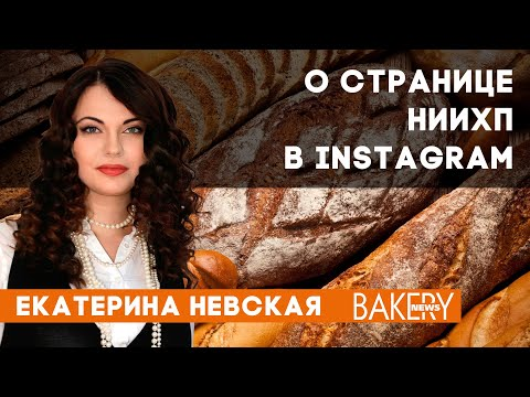 Екатерина Невская | О странице НИИХП в Instagram