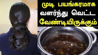 ஒரே மாதத்தில் முடி பயங்கரமாக வளர்ந்து வெட்டவேண்டியிருக்கும் | Long Hair Growth Naturally in Tamil