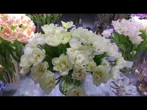 Al Lokrit International Dubai -Holland flower exhibition - (26/01/2017-31/01/2017)Part - 2
