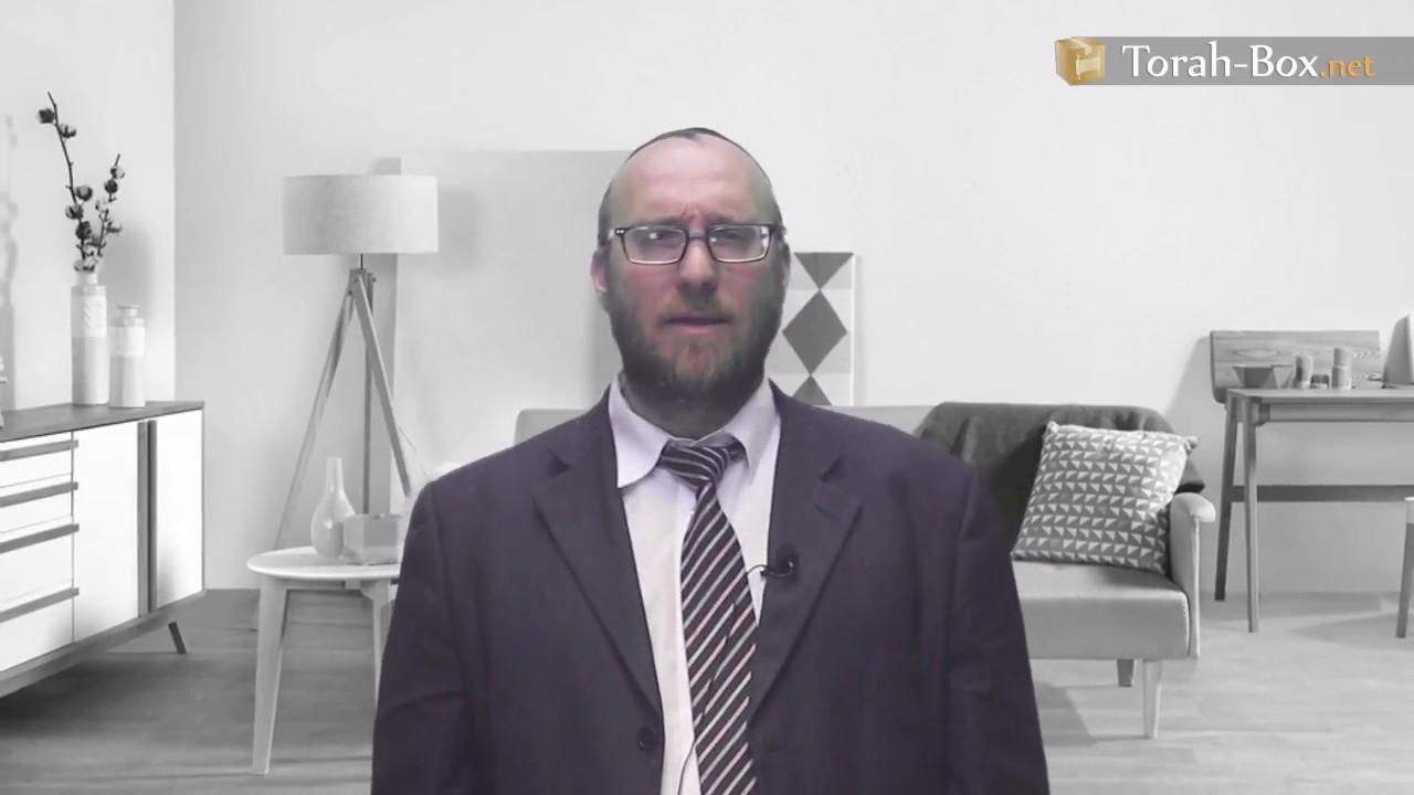 The Unique Story Behind the Birth of Rav Elyashiv (Rav Shmuel Galandauer)