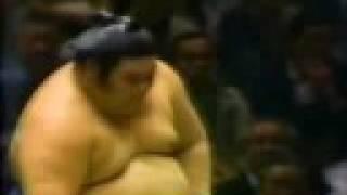 Sumo belly (力士のお腹)