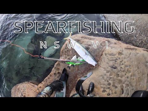 Spearfishing NSW 6 2019
