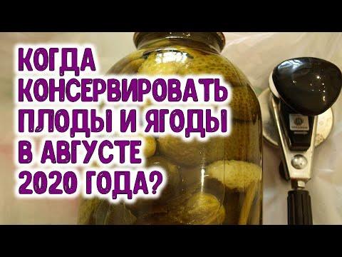 Когда консервировать, сушить, замораживать плоды и ягоды в августе 2020 года? Агрогороскоп на август | стерилизации | консервация | заготовки | горяченко | кабачков | огурцов | раиса | зиму | без | на