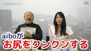 【ITmedia NEWS TV】関東大雪/aiboのお尻を犬がクンクン、なぜ?/スマスピはダジャレが好き?