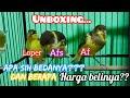 Unboxing Beli Kenari Seri Loper Af Afs Cek Harga Burung Kenari Terbaru   Mp3 - Mp4 Download