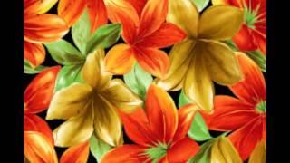 Norrie Paramor  -  Petite Fleur