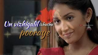 Adi Vellakari Velayee - Kadaikutty Singam - Lovely Whatsapp Status...