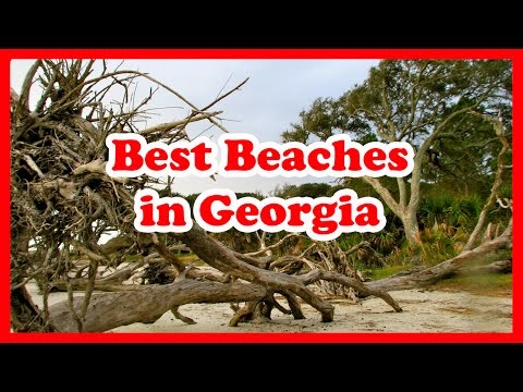 The 5 Best Beaches in Georgia | The United States Beaches