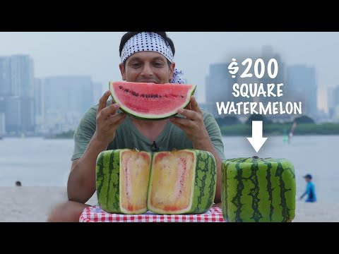 Eating a $200 Square Watermelon ★ ONLY in JAPAN