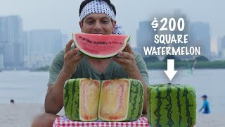 It's now square watermelon season in Japan and that means you'll se...