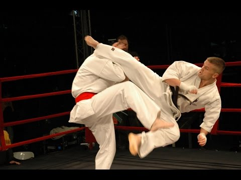 Best Kyokushin Karate 'KO' in History