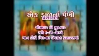 Ek Dal na Pankhi