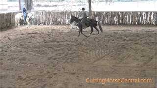 Kit Ya Some   2013 Chestnut mare in training with Chris Johnsrud