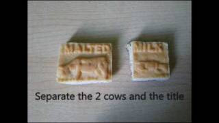 How To Eat A 'malted Milk' Biscuit (cow Biscuits)