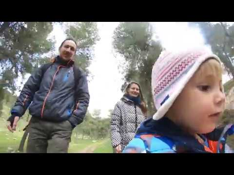 Download Yatir Forest Walk