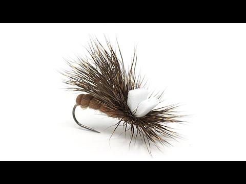 Lavezzinifly - Sedge in capriolo fly tying