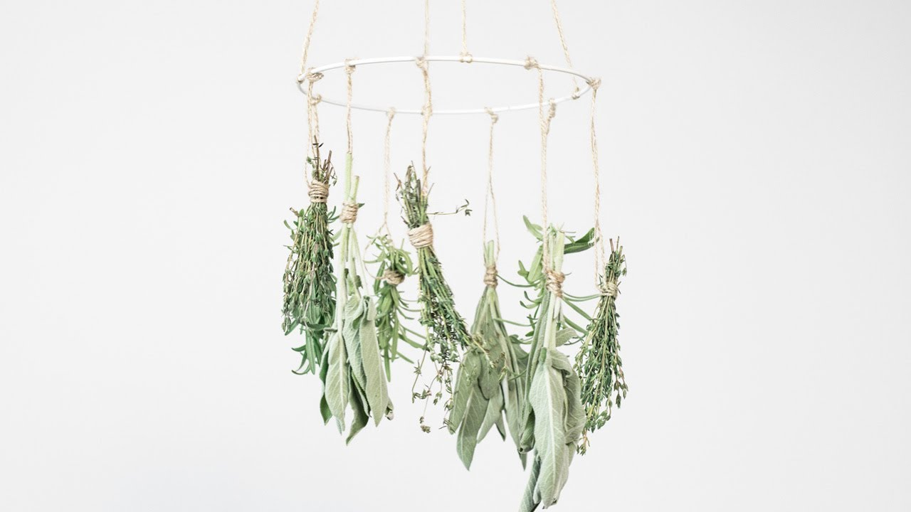 diy air-dry herbs garden