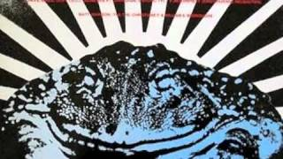 Dave Ball & Genesis P Orridge - Muzak For Frogs
