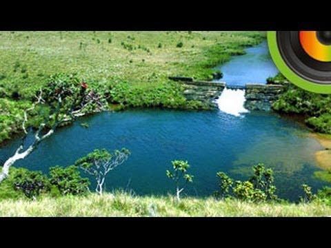 Horton Plains National Park  - Go Places Sri Lanka