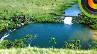 Horton Plains National Park  - Go Places Sri Lanka