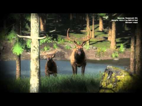 TheHunter Bow Hunting Trophy Elk (Bulls Best 1st Place)