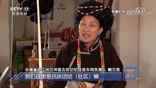 《中国三农报道》 20201211|CCTV农业 - YouTube